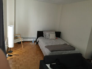 Bachelor Apartment - Spadina stn for October 1st-November 30th