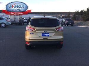 2014 Ford Escape S St. John's Newfoundland image 13
