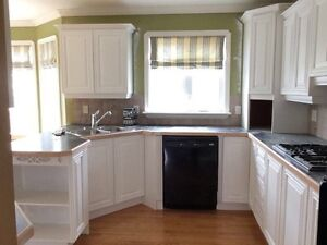 Mega Refinishing -Cabinets/Floors Don't Pay Till Job Is Done  St. John's Newfoundland image 1