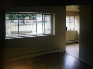 Renovated First Floor Apartment in Excellent Area London Ontario image 1