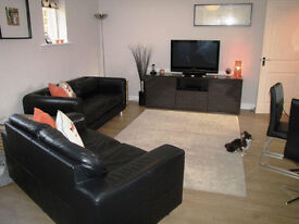 Stunning two bedroom furnished flat in Wanstead