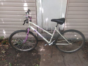 """Barletta ATB-12 12-Speed Bike with 17"""" frame and 26"""" tires."""
