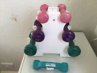 York Dumbell set