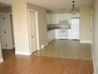 UTILITIES INCLUDED Beautifull luxury apt. Riverview