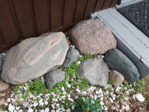 Will Pick up Unwanted Rocks