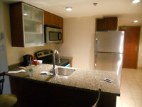 Furnished studio in Hilton's building, 450$/weekly, 1795 $/month