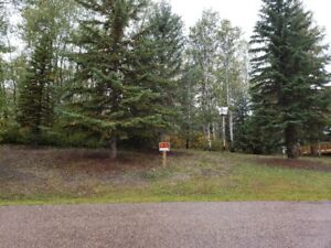1/2 acre lot at Upper Mann lake