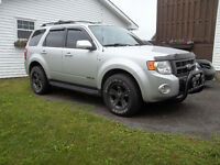 2008 Ford Escape Limited V6 4WD
