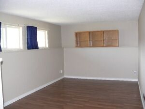 Two basement  bedrooms suite for rent Edmonton Edmonton Area image 2