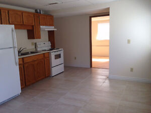 1 Bedroom Basement Suite - Newly Renovated
