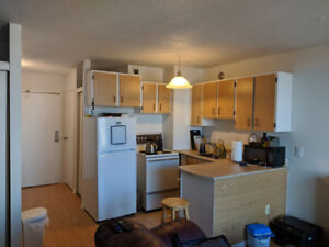 Bachelor Apartment in South End ! Move in before Christmas!