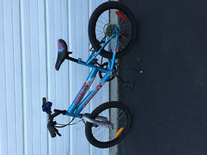 Used 5 speed bike