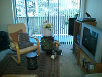 SHARE- Large 2 bedm+den apt. w. pool, hot tub +++ Great location