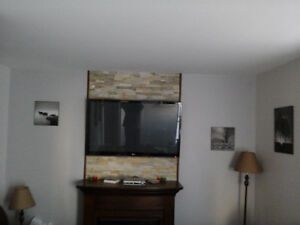 Nice Condo in downtown St. John's