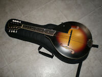 Gretch NY Mandolin with  pickup and Fishman II Pre Amp