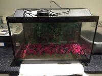 Turtle fish aquarium tank gravel LED light