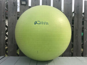 Wai Lana Exercise Ball for Yoga Pilates Stretching Abs Fitness