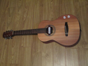 3/4 Acoustic/electricguitar and case