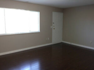 2 Bedroom basement