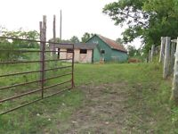 Quiet Barn and Pasture For Rent