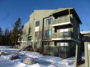 2 BRM fully furnished Tumbler Ridge condo