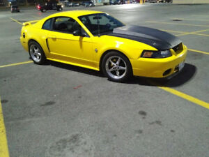 2004 Ford Mustang Gt Coupe (2 door)