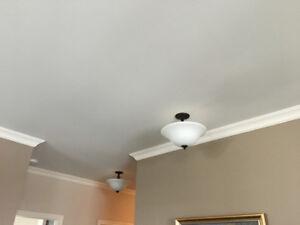 Luminaires de plafond ( 2 ) en très bon état .