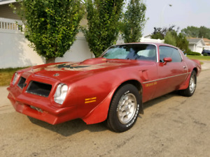 1976 Trans Am Full load, numbers matching 400 auto