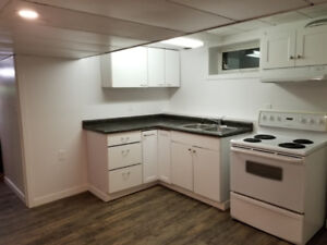Private Basement Suite - One Bedroom. Everything Included!