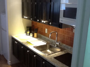 New& Bright 1BDRM Apart- Fully Furnished- All Utilities Included