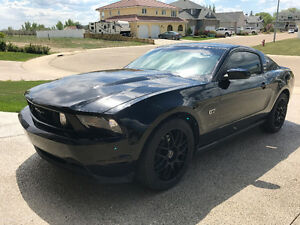 2010 Mustang GT (Blacked out)