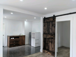 1 bedroom completely renovated semi house for rent all in...