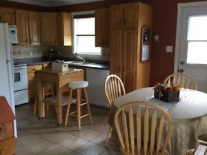 3 Bedroom Apartment For Rent In Antigonish