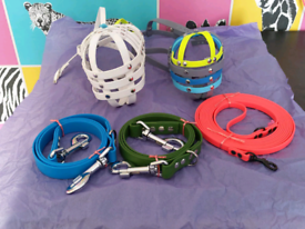Made to measure dog collar lead harness muzzle