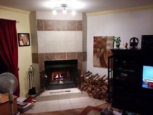Grand 5 et demi rénové avec foyer au bois et grande cour