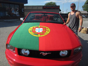 Euro Cup 2016 Car Hood Covers by Flag & Sign Depot Windsor Region Ontario image 8