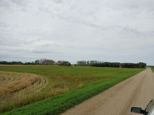 RM of Orkney 10 acre parcel with utilities 3 miles from Yorkton Regina Regina Area image 2