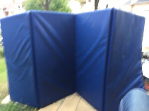 Gymnastic mat- priced to sell