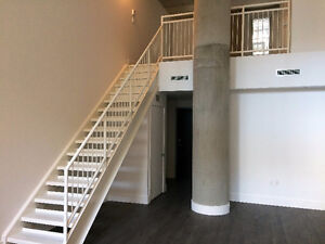 BEST PRICED LOFT (2flrs) Le Peterson downtown MTL, has parking