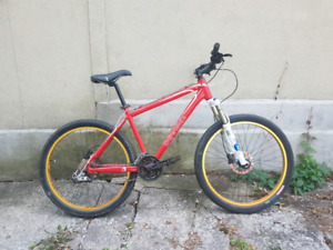 Devinci bike with Fox Forks and Hydraulic Brakes