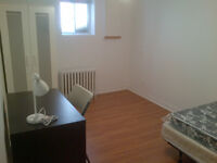 ST CLAIR/DUFFERIN:All Included,Brand New Bsmt Rm,Male Preferred