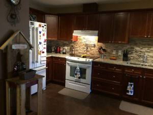 Beautiful apt. style condo in Oliver- room for rent!