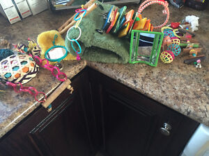 Bird housing and toys