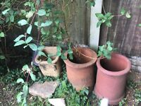 4 reclaim chimney pots/ planter