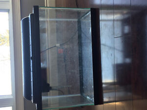 15 gallon fish tank + all accessories