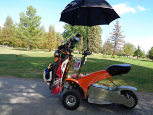 Electric trike for sale,