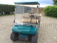 Golf Buggy petrol engine driven