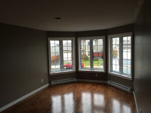 Beautiful and spacious apt in kenmount terrace