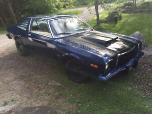 1979 Plymouth Volare Duster model