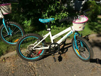 Flygirl Supercycle bicycles